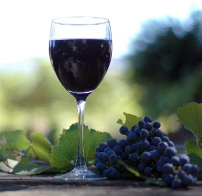 """""""Vadászok bora"""" borverseny a ceglédi Aquarell Hotelben"""